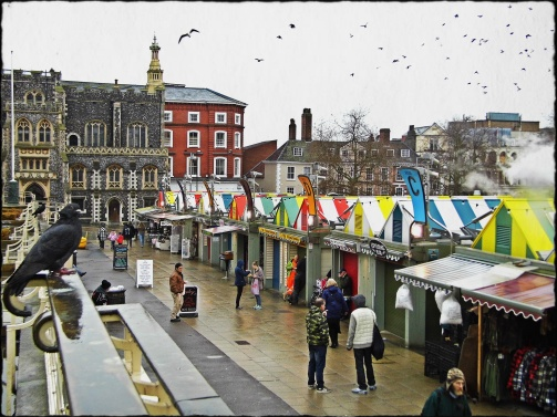 Birds Over Norwich Market.jpg