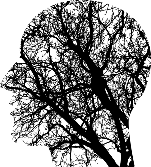Brain_Tree_Roots_Psychology_Mental_Health (Pixabay)