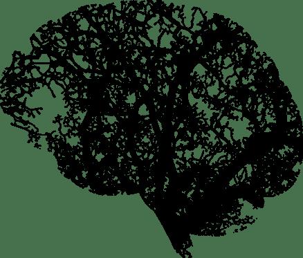 Brain_Tree_Roots_Psychology 2 (Pixabay)