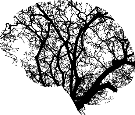 Brain_Tree_Roots_Psychology 2 (Pixabay)