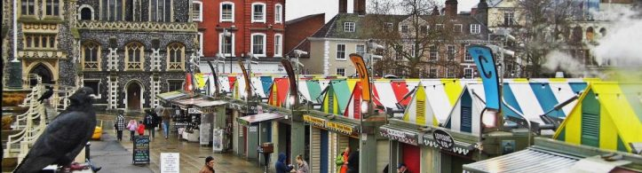 cropped-birds-over-norwich-market-wordpress-cover-image.jpg